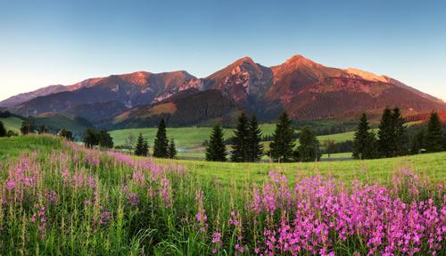Letní dovolená Slovensko dovolená s dětmi